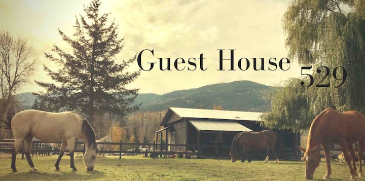 Guest House 529, Stay With Our Beautiful Horses.