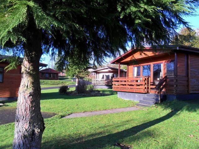 Birch 20 - Dumfries and Galloway - Haus