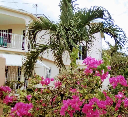 Sea View Apartment-Peace, Privacy, Beach in 5 mins