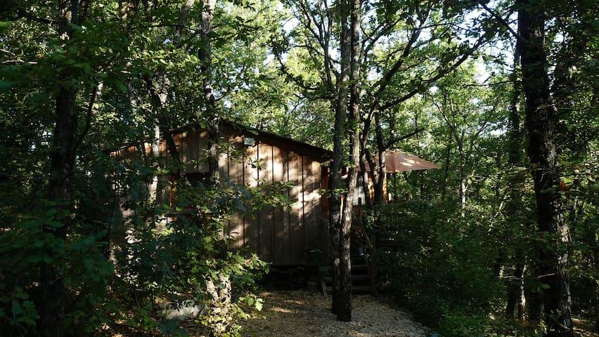 Le chalet dans les bois - Rochegude - House