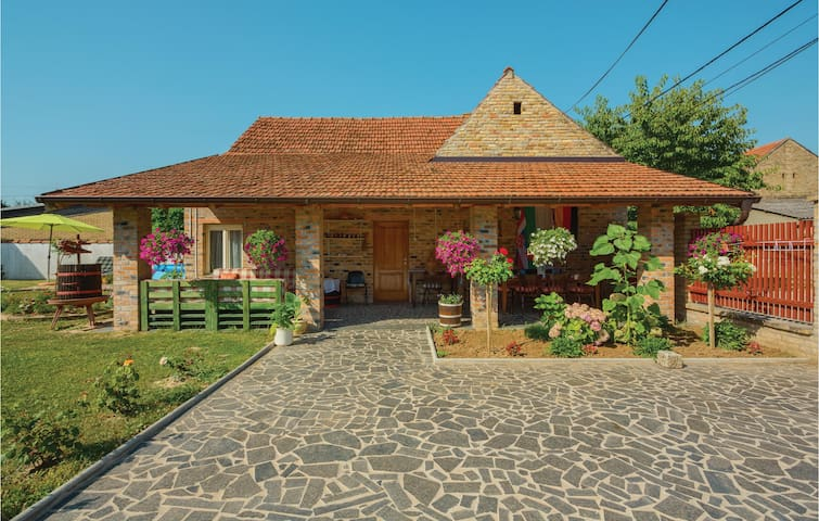 Holiday cottage with 3 bedrooms on 150 m² in Erdut