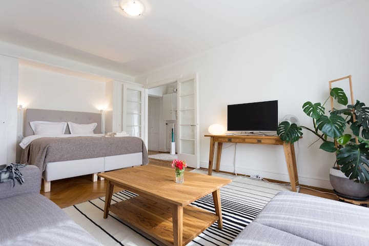 Cozy apartment w/ terrace in center - Lausanne