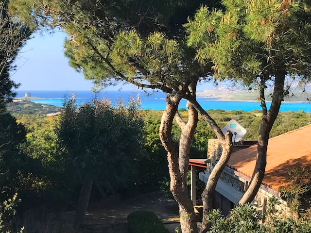 Beautiful Villa Stintino la pelosa large garden