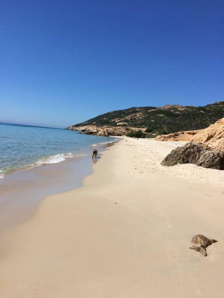 In vacanza sulla bianca spiaggia del Pinus 2