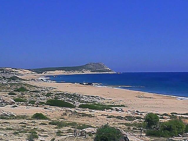 Quiet Secluded Surf, Artist Retreat - San José del Cabo - Casa