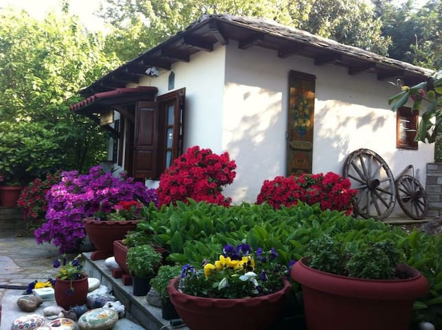 Gardenia-Nefeli - Mouresi - House