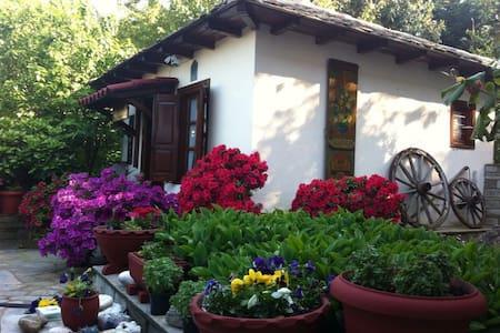 Gardenia-Nefeli - Mouresi - Ev