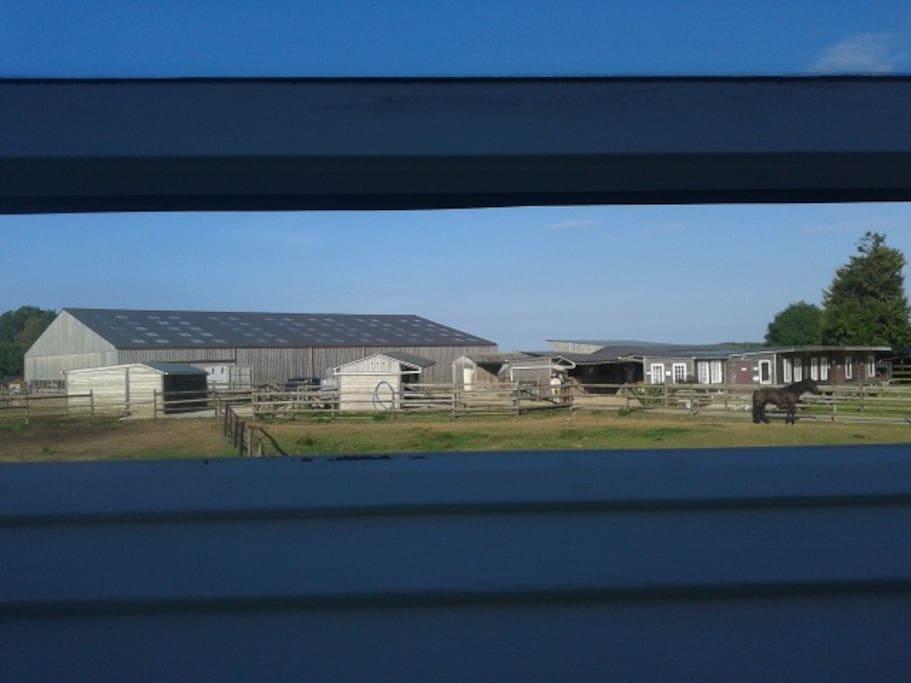 vue des fenêtres