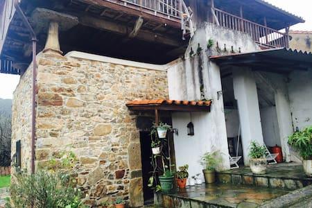 Asturias, Playa Artedo y Playa San pedro - Dom