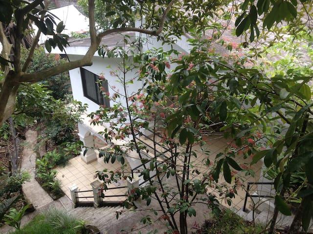 Nube blanca : un oasis en San Andres