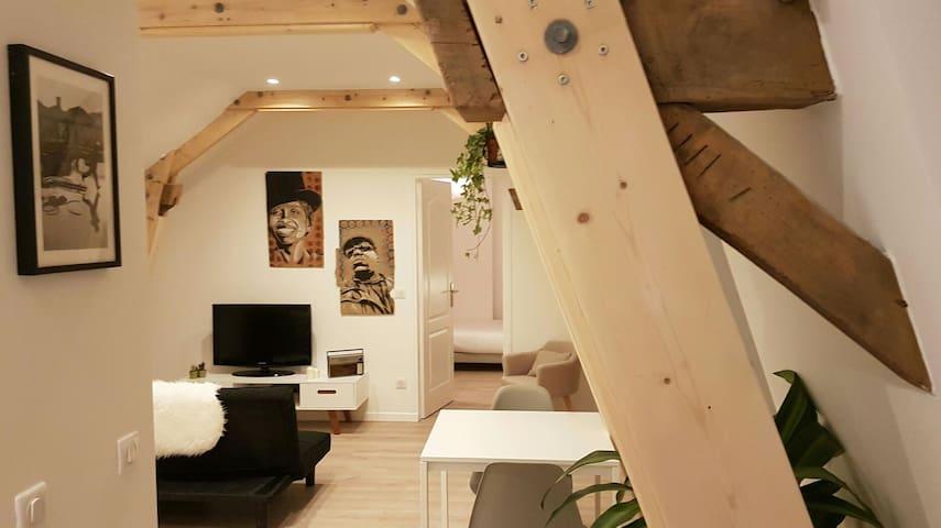 Le Petit Nid, appartement spacieux à Lille - Lille - Departamento