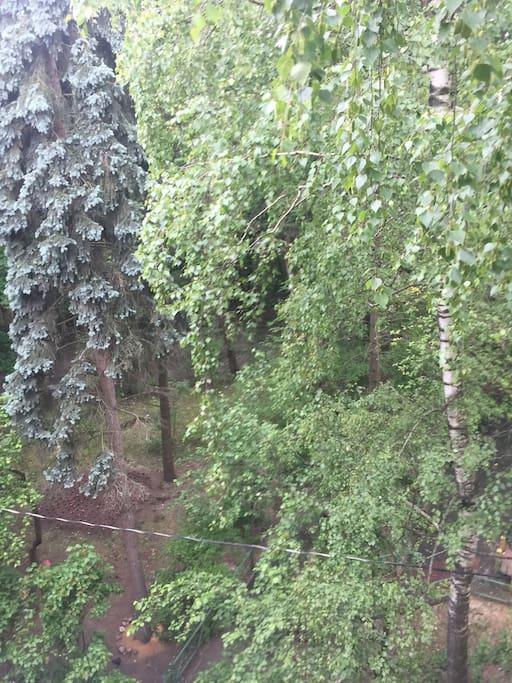 Вид из окна ,благоустроенная территория,тихий двор ,в шаговой доступности река Москва