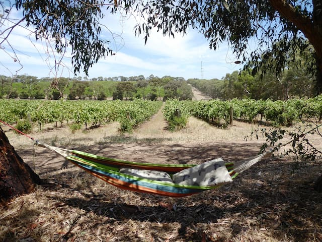 Relax with a view Amongst the Gum trees.