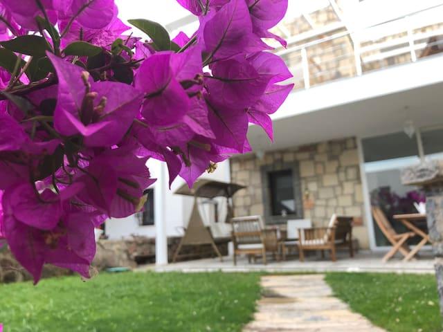 Özel Plaj Akvaryum Koyu Villa- Kalekent  Akyarlar