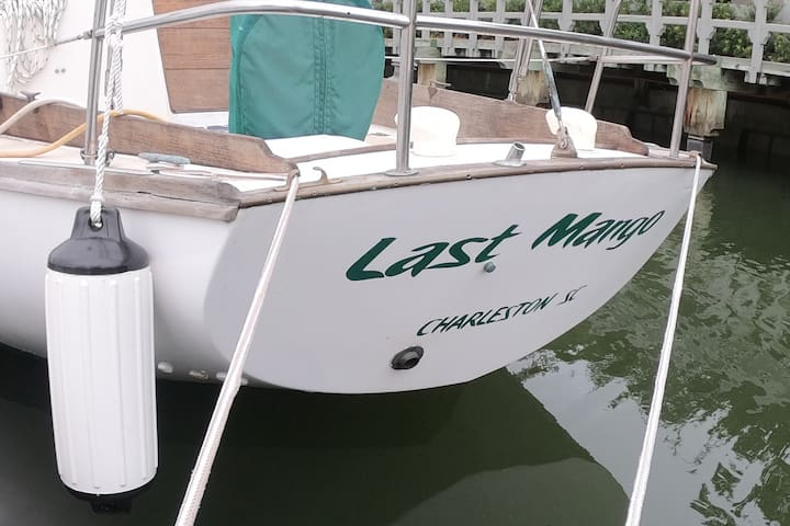 """Last Mango"" Shelter Cove Sailboat"