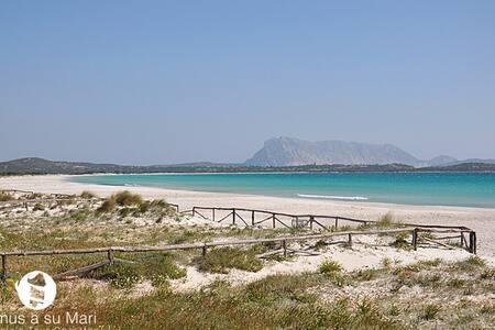 Beach Villa La Cinta - San Teodoro
