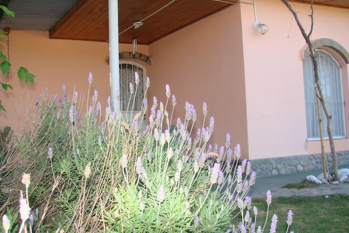 BUNGALOWS LOS DUENDES - Cruz del Eje - Alojamento ecológico