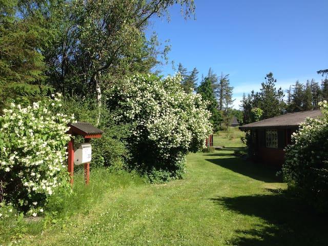 Cosy house with greenhouse/orangeri - Løkken - Chatka