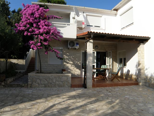 Apartments Ostaric - Apartment A - Mandre - Apartamento