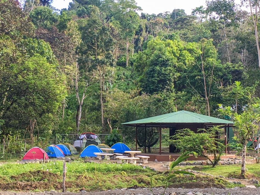 Tents and Large Multi-Use Octagonal Building w/Showers and Toilets - YEJOS CAMPING