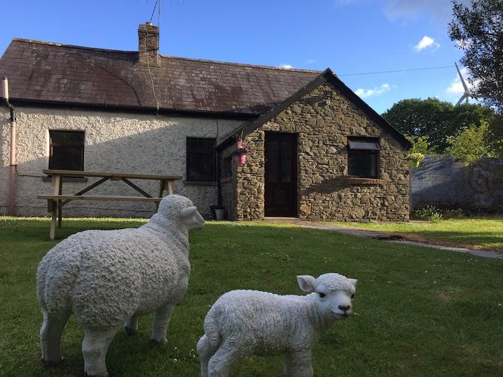Rose Cottage in Cork