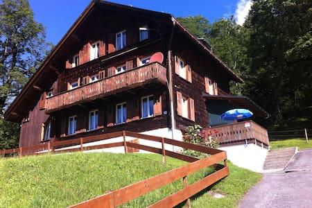 Fewo Haus Hunduren CH-Braunwald - Glarus Süd