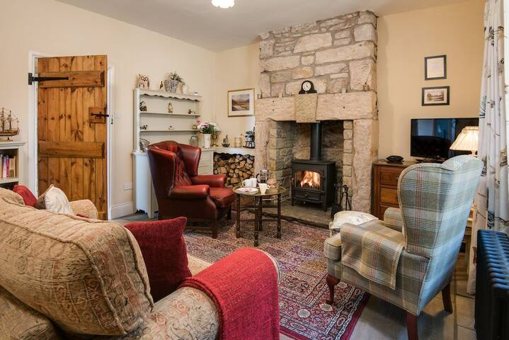 Cosy Living room & unlimited log supply