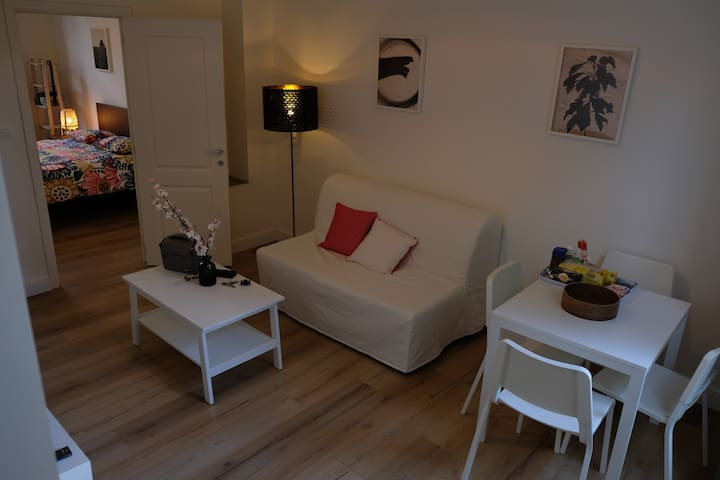 Renovated apartment next to the centrum 1st floor