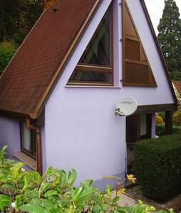 Pavillon individuel dans un écrin de verdure - Kaysersberg - 獨棟