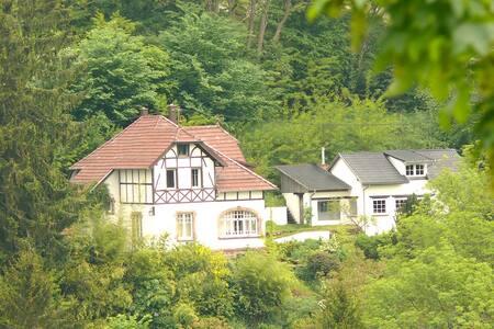 La Villa des Oiseaux  -  La Petite Pierre