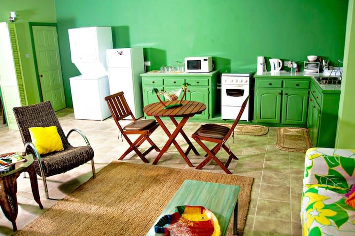 Funky & Spacious Green Studio
