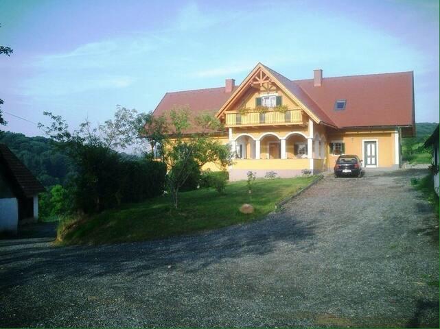 Weingut - Ferienhaus Sonja Rohrbacher Apartment 1