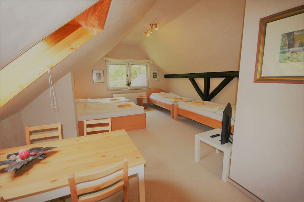 Studio Apartment mit 4 Betten - sleeps up to four adults