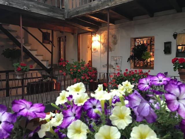 LA CORTE DEL POETA Amazing house into nature