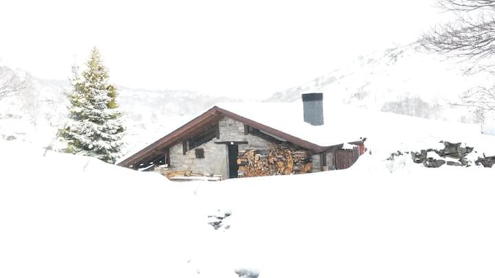 O FILANDÓN-Un lugar Perdido y Mágico-CRLE816