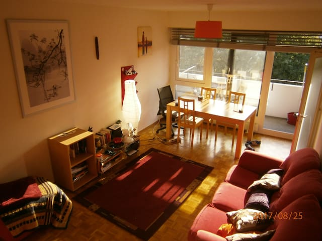Big bright room in cozy and centered appartment