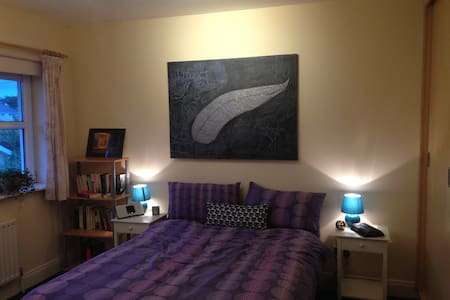 Spacious Quiet Double Room in Detached House - Cork - House