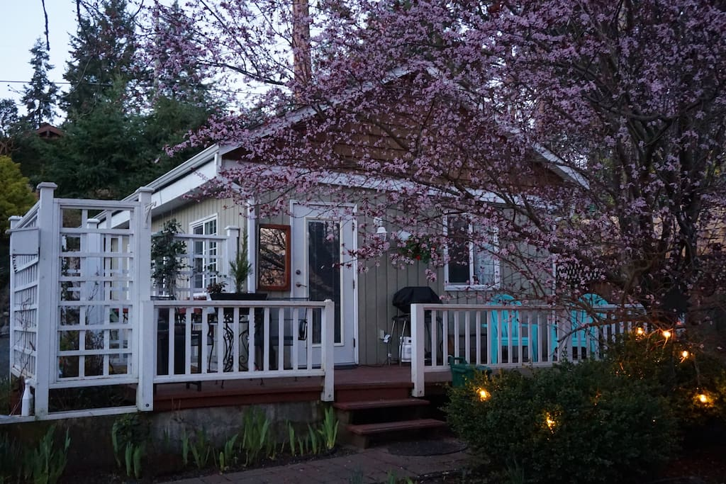 Sunset Cove Guest Cottage