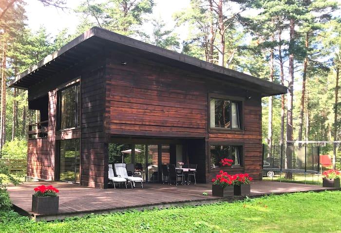 Modern handicraft log house near the beach.