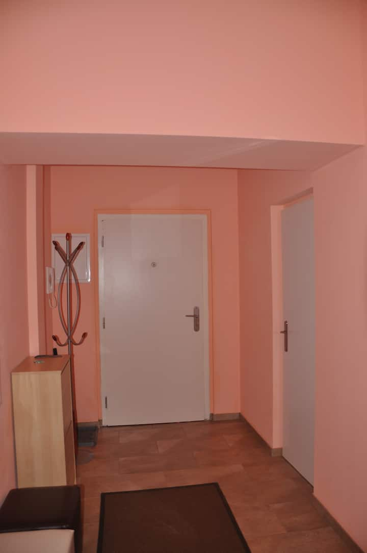 Spacious one bedroom apartment Zahradni 31
