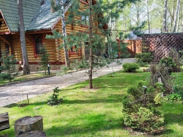 Бревенчатый дом в лесу.