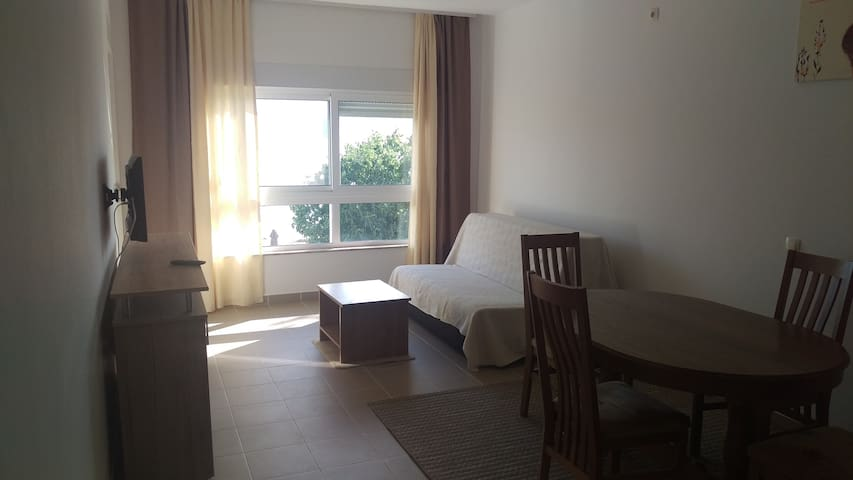 1 room apartment (2+2) at the beach Crancina