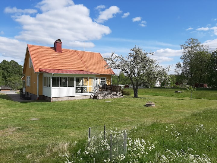 Nyrenoverat hus Hultamarken, Väghult