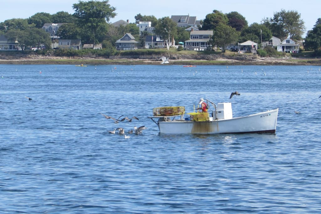 A Lobsterman hauling his traps