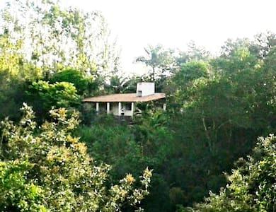 Uma casa cheia de Verde e Pássaros