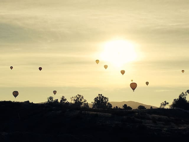 Hot Air balloons overlooking wine country