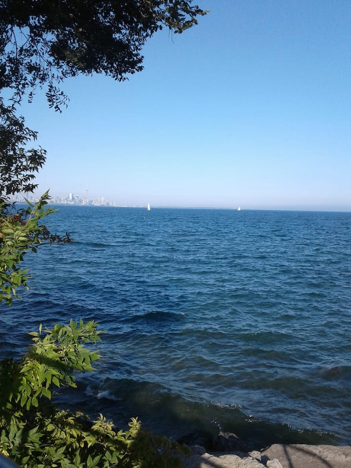 Beautiful bsmt apartment near airport and lake