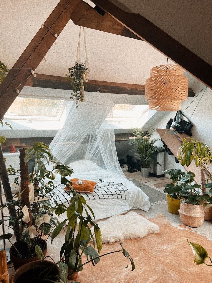 Cosy Green Attic Ghent + 2 free bikes