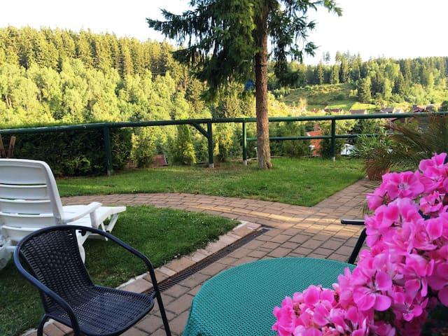Ferienwohnung in sonniger Südlage mitten im Harz