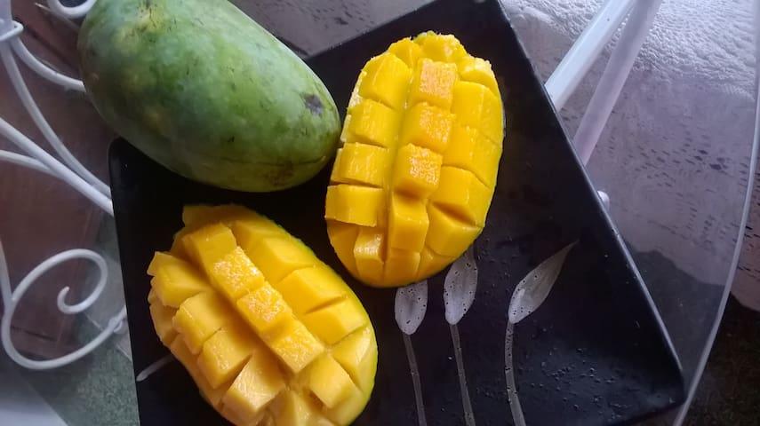 ..mango when in season